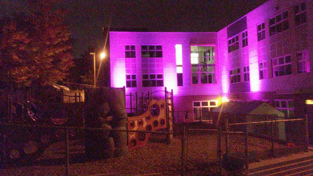 École rose