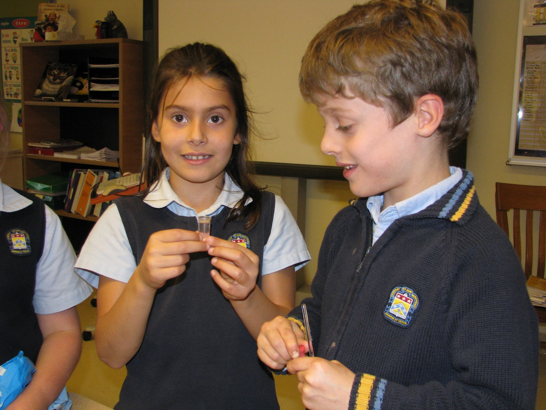 Dans la classe de madame Luce, les élèves font des découvertes scientifiques.